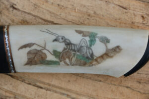 JSC Knife #354(e) - Animals of the Wood
